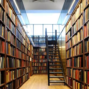 Библиотеки Буя