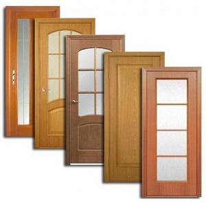 Двери, дверные блоки Буя