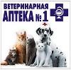 Ветеринарные аптеки в Буе